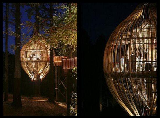 Crysalis Treehouse, Nouvelle-Zélande