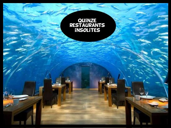 Top 15 des restaurants insolites