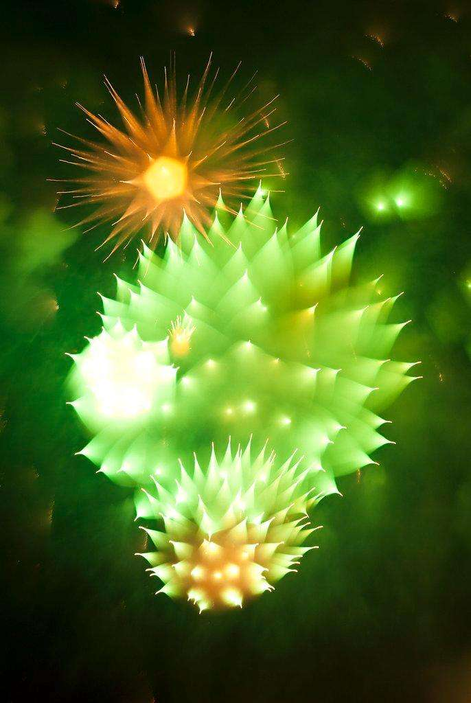 Fireworks, When the Camera Refocuses During the Explosion