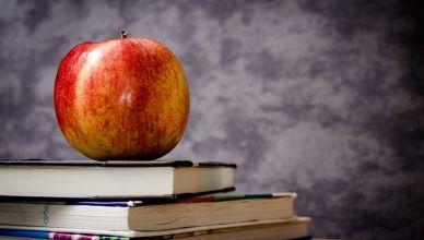 Suivre des cours de philosophie et théologie à distance