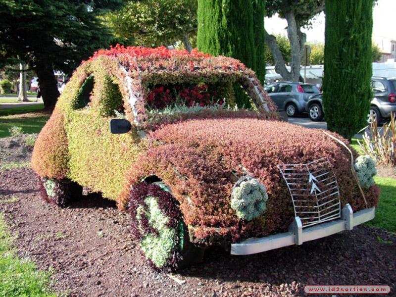 voiture ecologique photo insolite
