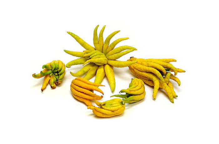 fruits-legumes-etranges-4