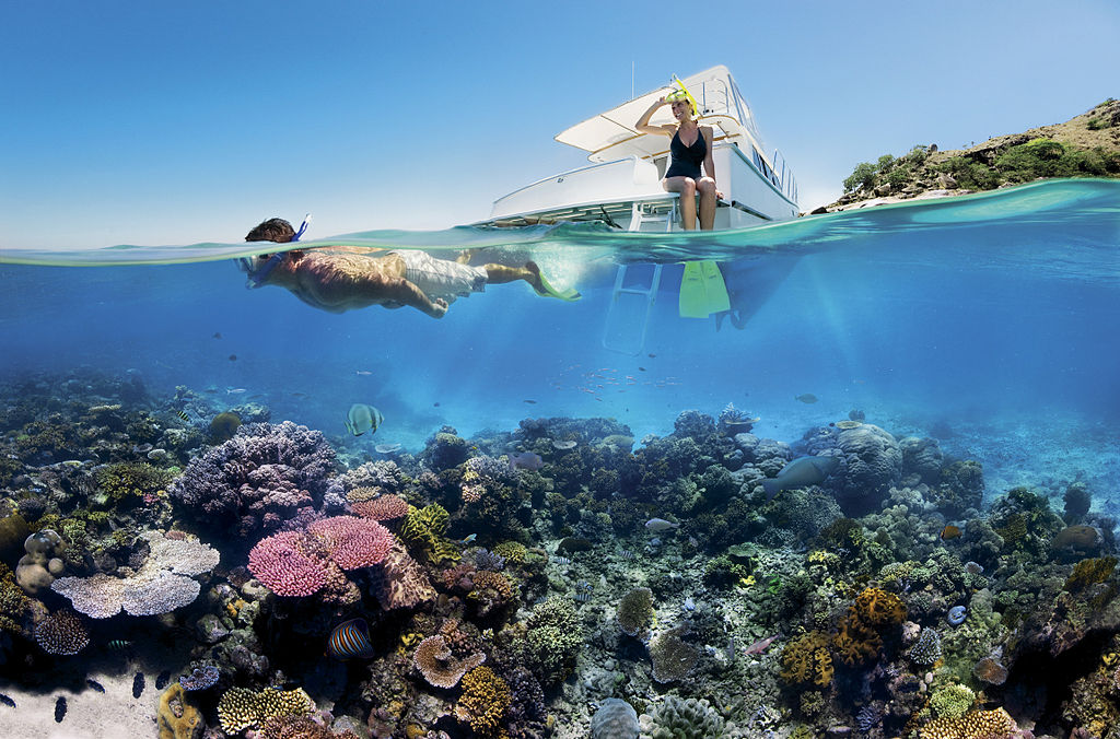 Reef_Snorkelling_on_the_Great_Barrier_Reef