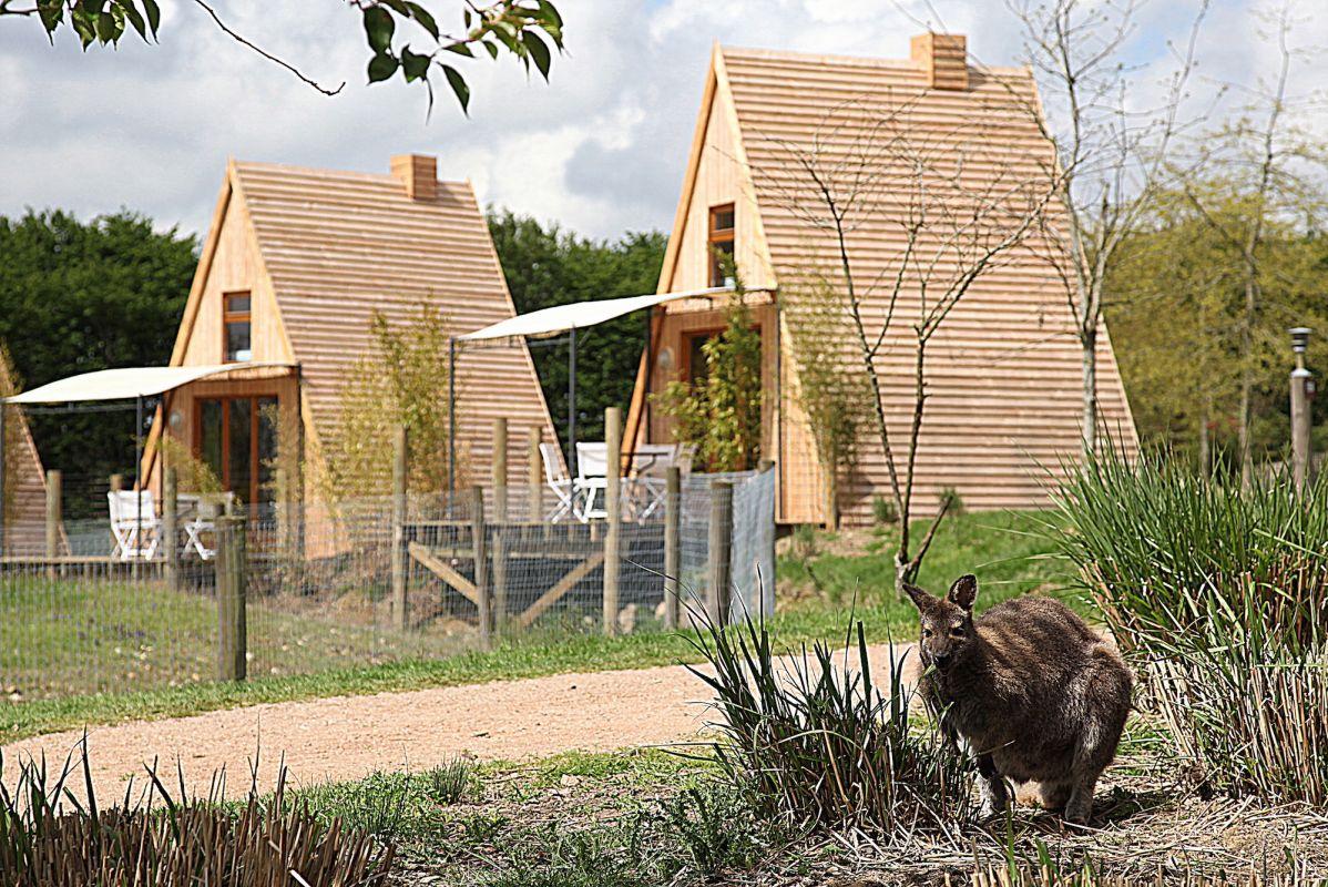 Cerza Safari Lodge