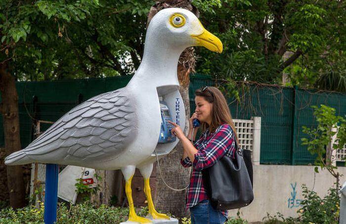 Cabine téléphonique en forme d'oiseau