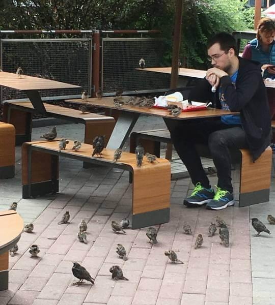 On ne peut plus manger tranquillement