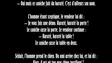 #15 - Blague : Karaté le Chien